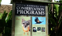 conservation programs