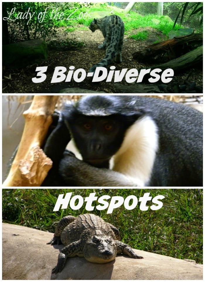 3 Bio-Diverse Hotspots